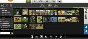 1595886932 Ulasan Kizoa editor video tersedia di mana saja